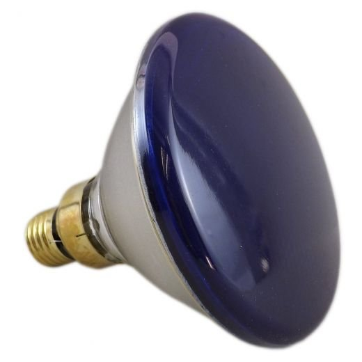 80Watt Par38 Blue Reflector Lamp