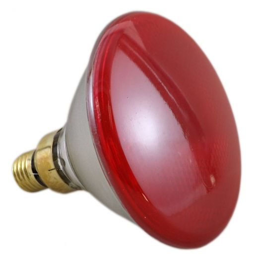 80Watt Par38 Red Reflector Lamp