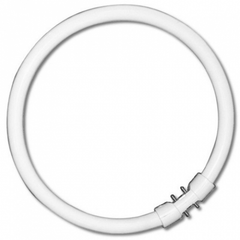 Circular Fluorescent 22W Warm White Tube
