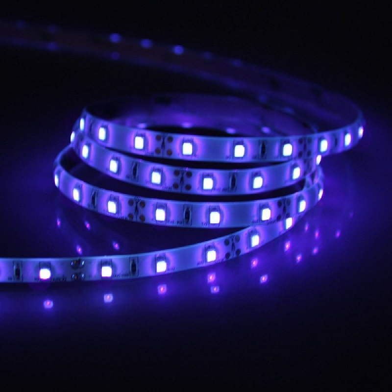 5 Metre Purple IP65 12V LED Tape LST60-P