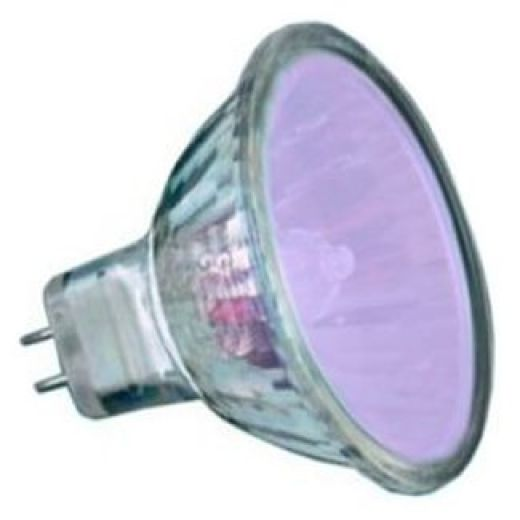 50Watt  2,000 Hour Lilac Low Voltage Dichroic Light Bulb
