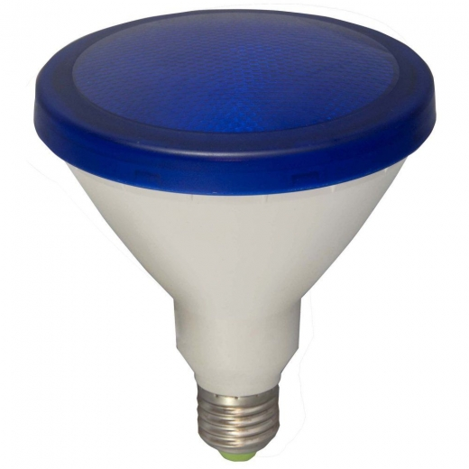 Bell Exterior LED PAR38 15W Blue Lamp Non Dimmable 05653