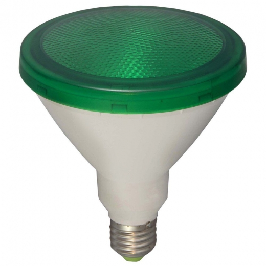 Bell Exterior LED PAR38 15W Green Lamp Non Dimmable 05651